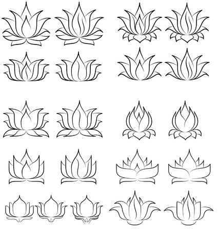 illustration of great lotus  Vector