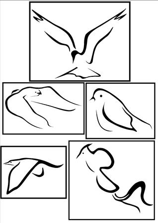 5 different bird symbols icons