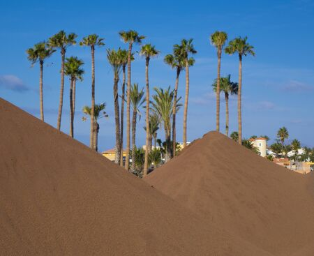 mounds: Palm trees with earth mounds Canary-islands; Correlejo; Fuerteventura; Spain Stock Photo