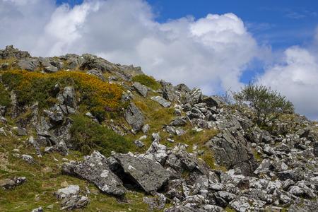 nationalpark: Dartmoor,National-park Devon England UK