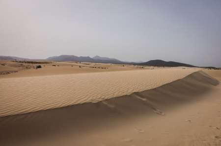 corralejo: Sand patterns on the Nature reserve, Park Natural, Corralejo, Fuerteventura, Canary Islands, Spain.