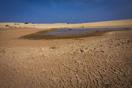 corralejo: Corralejo natural reserve after wind and rain, Fuerteventua, Canary Islands, Spain Stock Photo