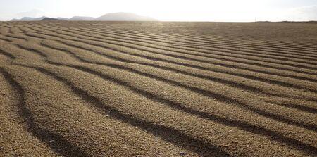 corralejo: Sand pattern, close up under a low sun, Park Natural, Corralejo, Fuerteventura, Canary islands