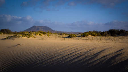 corralejo: Sand pattern and mountains under a bright sun, Park Natural, Corralejo, Fuerteventura, Canary islands