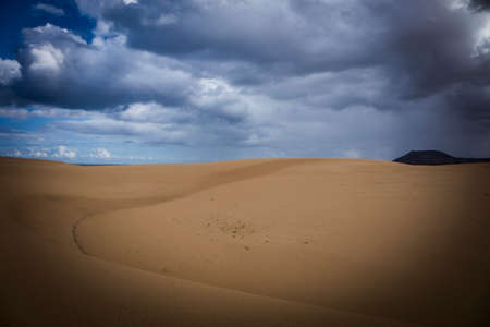 corralejo: Natural-park Corralejo in Fuerteventua the Canary Islands, Spain Stock Photo