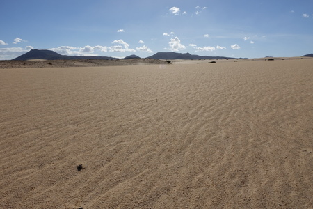 After rain in the natural Park in Corralejo the canary-islands Spain Stock Photo