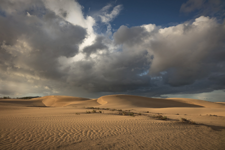 Sun and dark dramatic cloads creating a beautiful interesting sky over desert sands in the natural park in Corralejo, Fuerteventura, Las Palmas, Canary islands, Spain