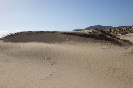 Patterns in the sand after rain and wind in the Natural park in Corralejo Fuerteventura Spain