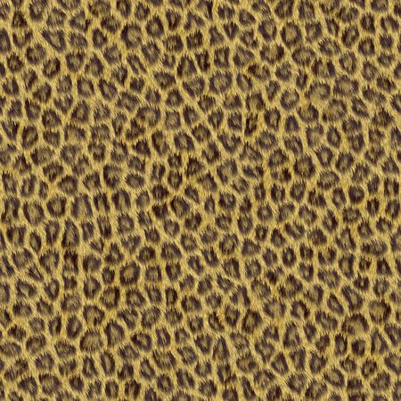 fur texture - seamless photo