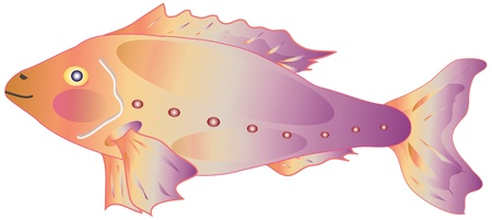 decorative fish Vector