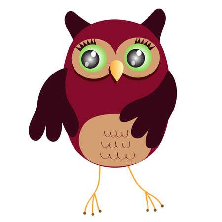 owl eyes: Cartoon Owl (vector version)  Illustration