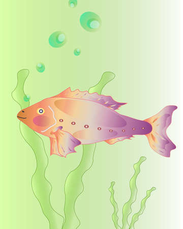 decorative fish Stock Vector - 12450353