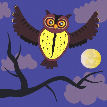 Cartoon night Owl (vector version) Vector