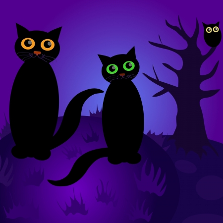 Cats at night  Vector