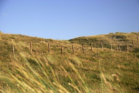 a dune in the netherlands
