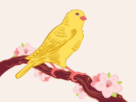 Hand drawn bird sitting on a branch of cherry in blossom Stock Vector - 6318850