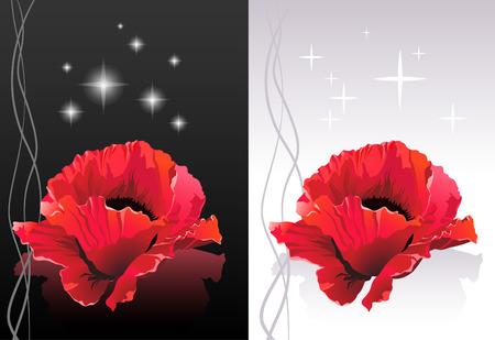 flores exoticas: Ilustraci�n de Spa - Poppy cabezas de flores flotando sobre una superficie  Vectores