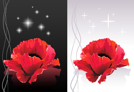 flower line: Spa illustration - Poppy flower heads floating on a surface