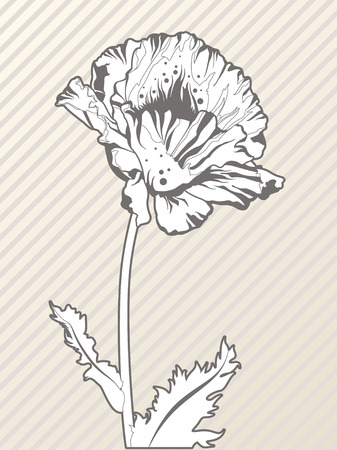 flower doodle on seamless lined background - high quality illustration Vector