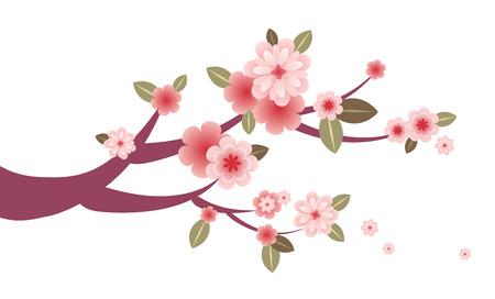 Spring blossom tree branch decoration Vector
