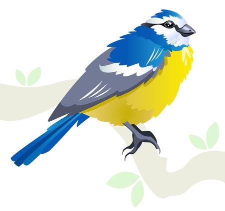 Tit ave sobre una rama en primavera - estilizada ilustración aislado sobre fondo blanco