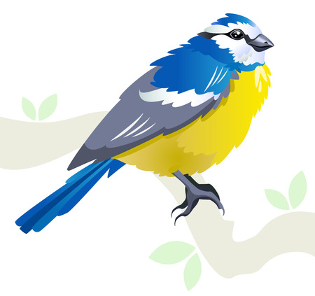 blue tit: Tit bird on a branch in spring - stylized illustration isolated on white background