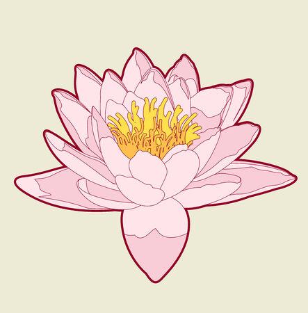lotus line art Stock Vector - 7860105