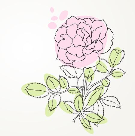 rose line art Vector