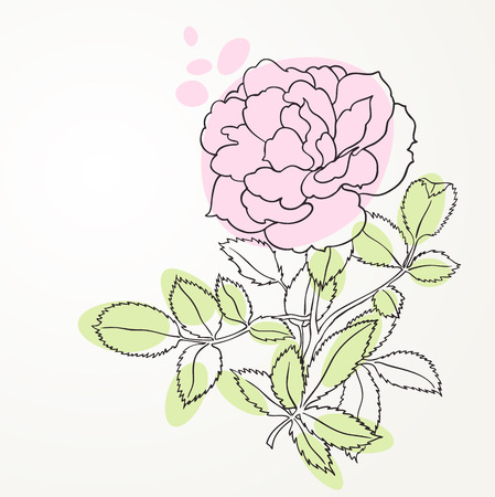 rose line art Vector