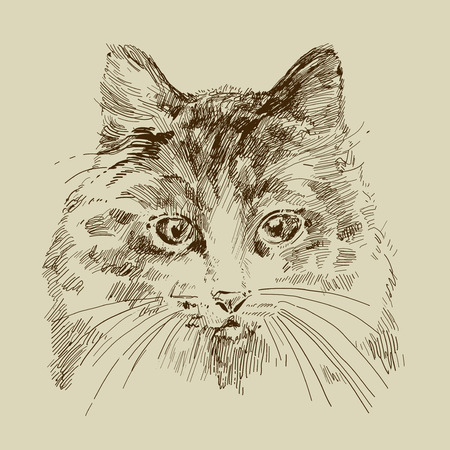 vntage card with a cat Vector