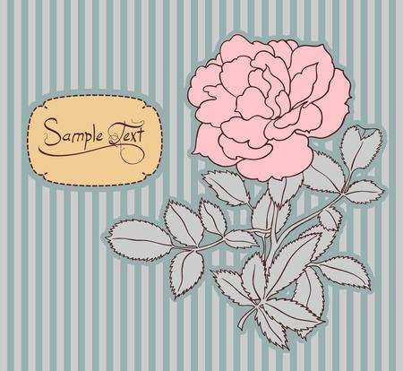 striped wallpaper: vintage card with rose  flower Illustration