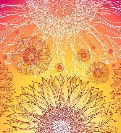 graine tournesol: arri�re-plan color� de tournesols