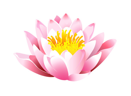 flor de loto: icono de Lotus