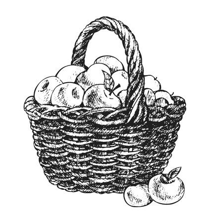 fruitmand: Apple mand tekening Stock Illustratie