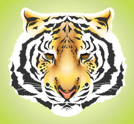 silueta tigre: Cabeza de tigre ilustraci�n de coloridos de alta calidad - malla de degradado  Vectores