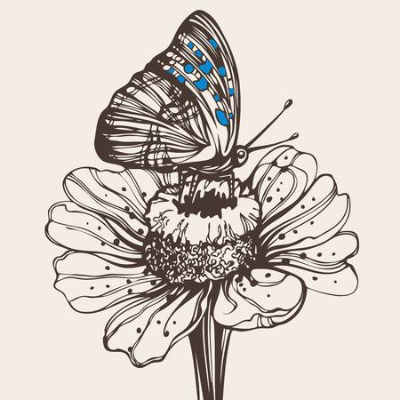 butterfly stroke: butterfly on a flower