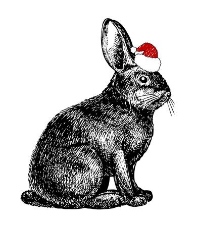 hares: christmas rabbit in samtas hat Illustration