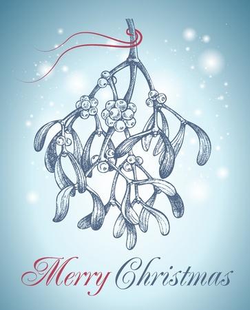muerdago: Navidad mu�rdago dibujado a mano Foto de archivo