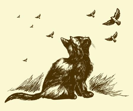 gato dibujo: gatito de dibujo Vectores