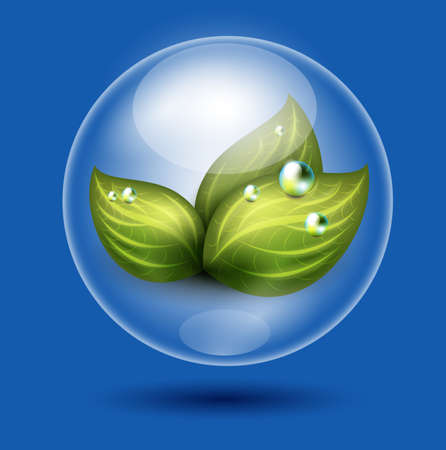 eco illustration of green leaves under glossy sphere protection Stock Illustration - 9082018