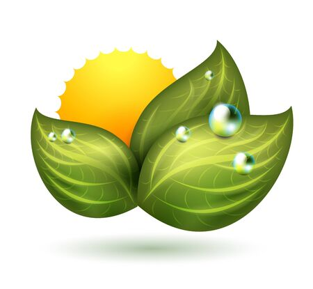 wellbeing: green symbol with leaf and sun Illustration