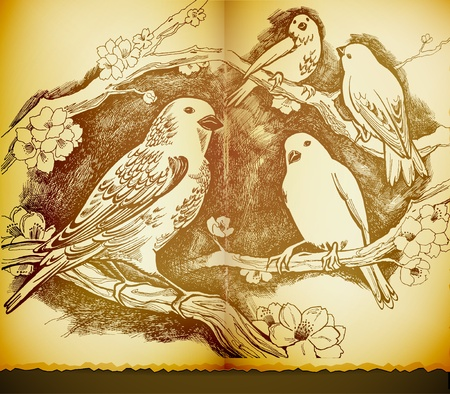 vintage drawing with birds and flowers Vector