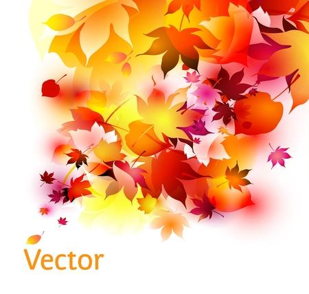 compositions: Autunno sfondo Vettoriali