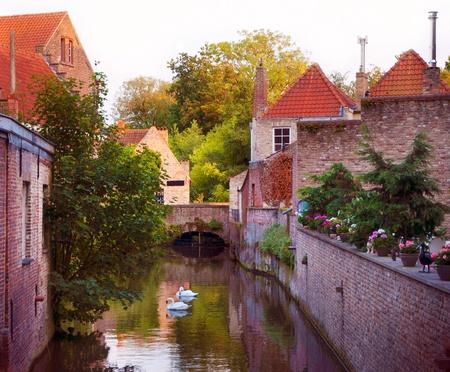 Mooi uitzicht over een gracht en witte zwanen, brug, rode daken in Brugge, België