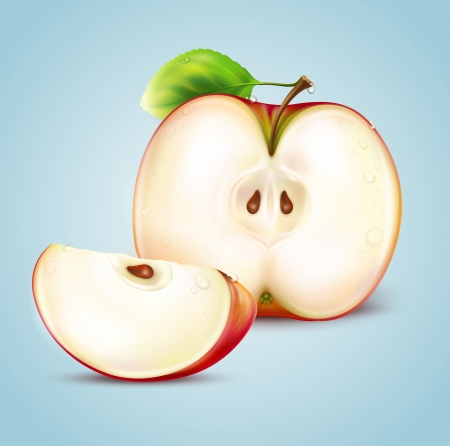two ripe red apples illustration Vector