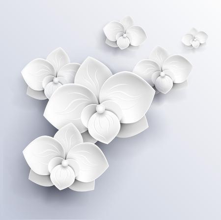 aniversario de bodas: papel flores de fondo - orquídeas blancas ilustración vectorial Vectores