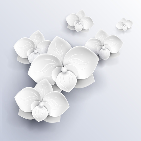 3d paper art: paper flowers background - white orchids vector illustration