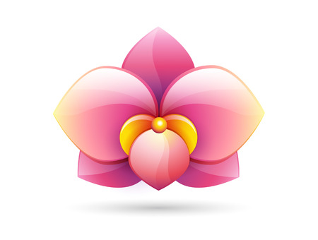 pink flower background: flower logo - pink orchid flower shape - vector icon isolated on white background