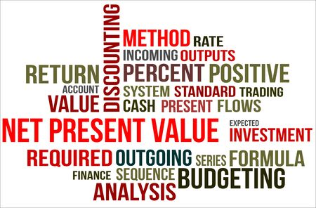 Word cloud of Net present value related items