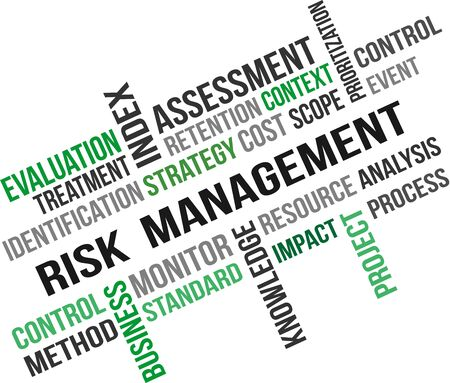 A word cloud of Risk management related item